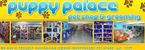 Puppy Palace Pet Shop & Grooming